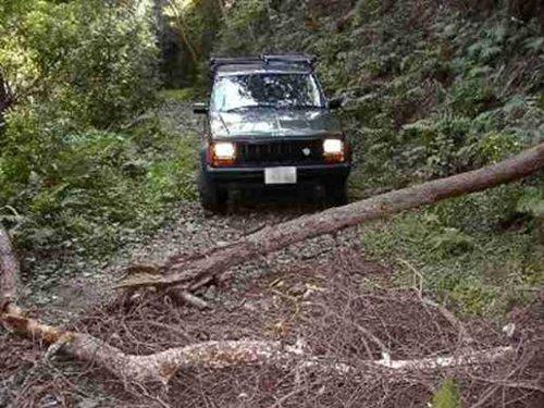 jeeph